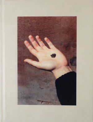 italia o italia federico clavarino 1600 paper cover akina photobook