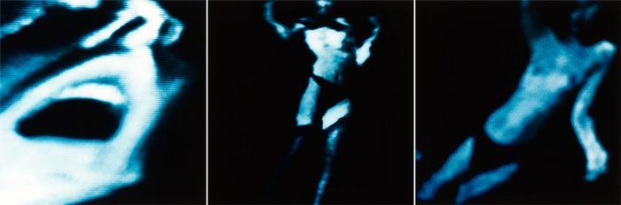 Reveries dusk - arena - frank rodick