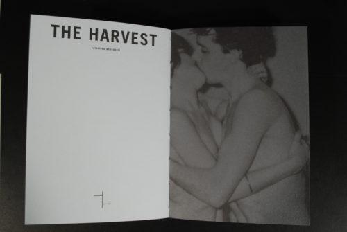 valentina abenavoli harvest
